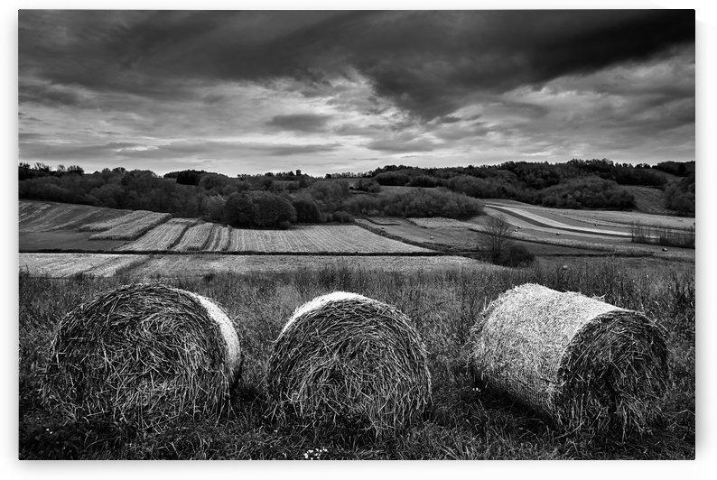 Rolling Down The Hill by Boris Matonickin