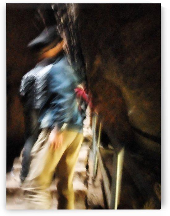 The Bullfighter by Robert Knight