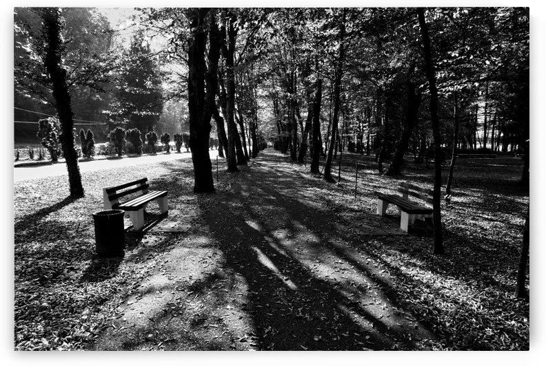 Park Hour by Boris Matonickin