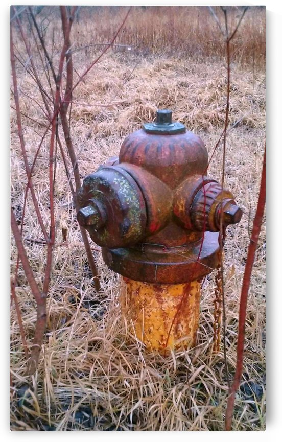 Fire Plug Fom the Past. by Natures Alchemy Captured