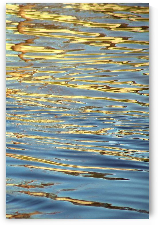 Sunlit Ripples on Lake by Ellen Barron O-Reilly