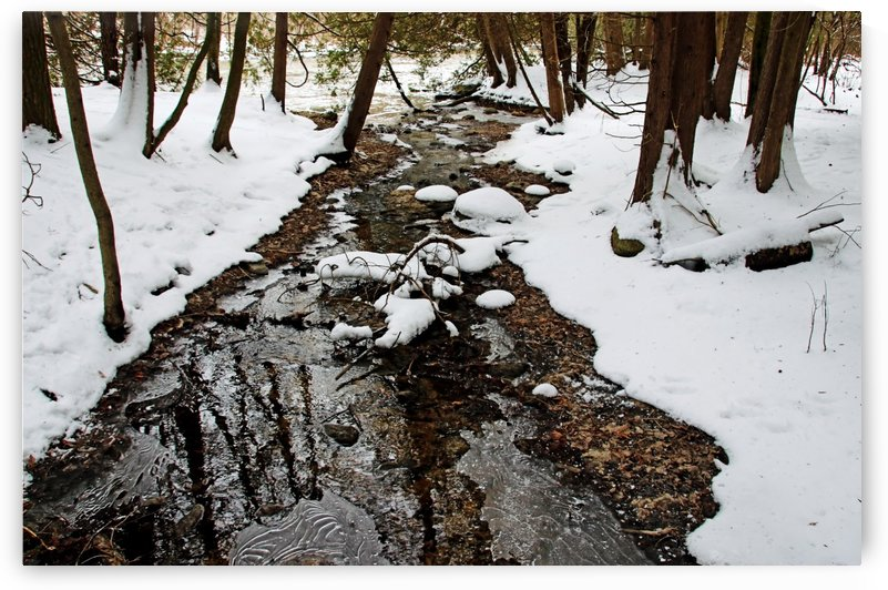 Winter Creek I by Deb Oppermann