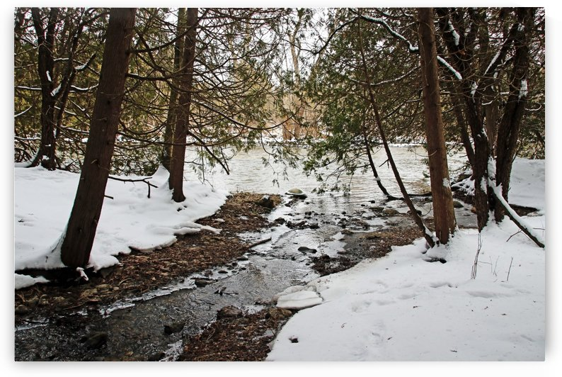 Winter Creek II by Deb Oppermann