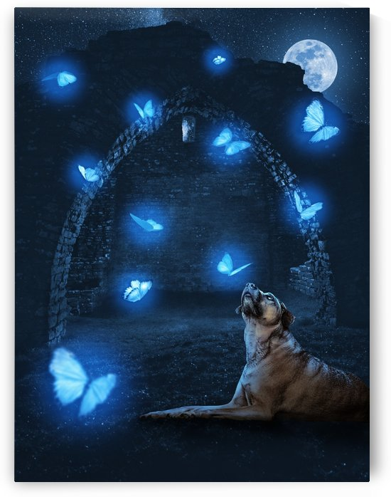 The Dog and the Butterflies by Rafael Ramirez