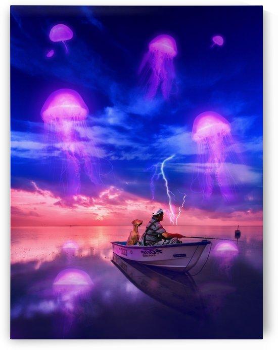 Jellyfish Sunset by Rafael Ramirez