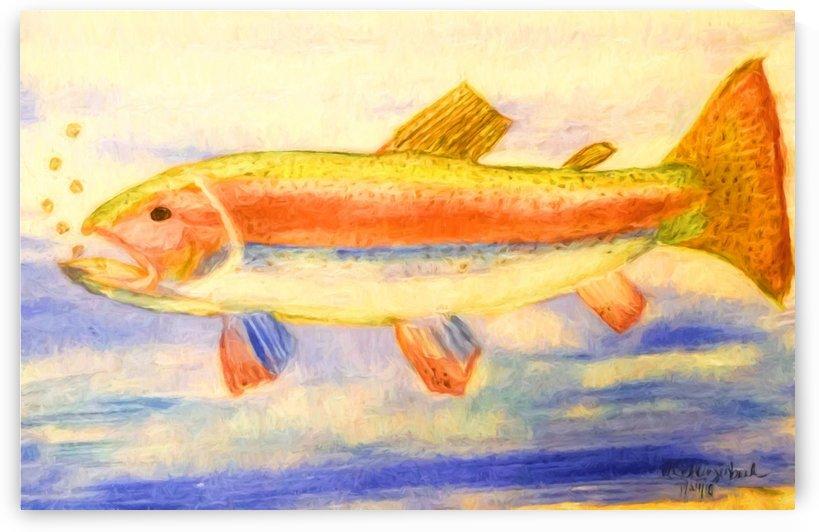 Rainbow Trout by Aurelia Schanzenbacher Sisters Fine Arts