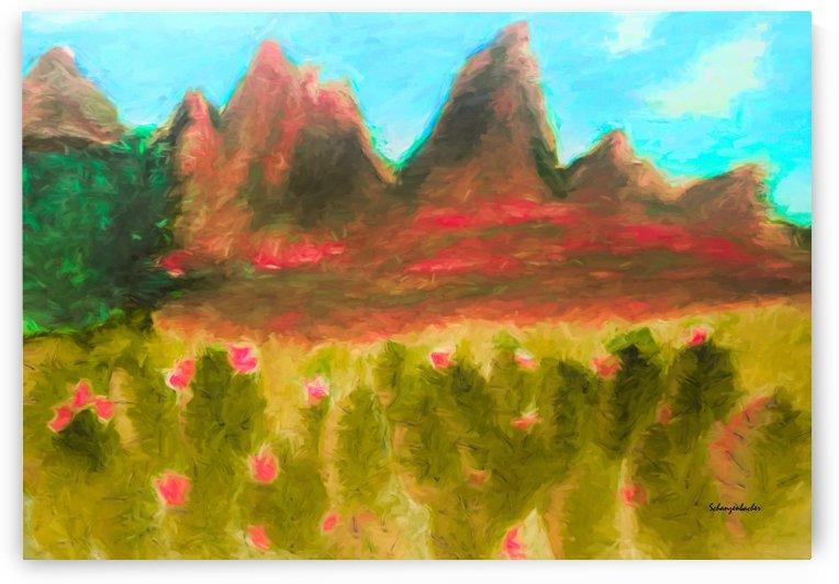 Desert cactus by Aurelia Schanzenbacher Sisters Fine Arts