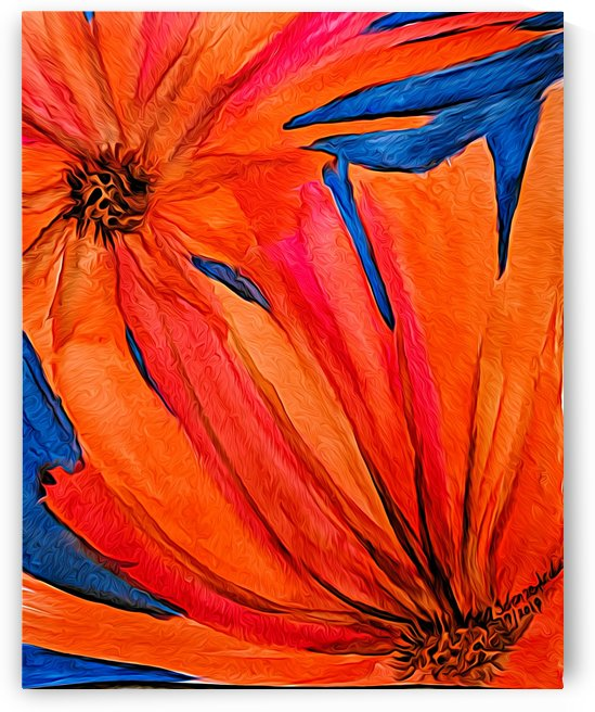 Orange Flowers  by Aurelia Schanzenbacher Sisters Fine Arts