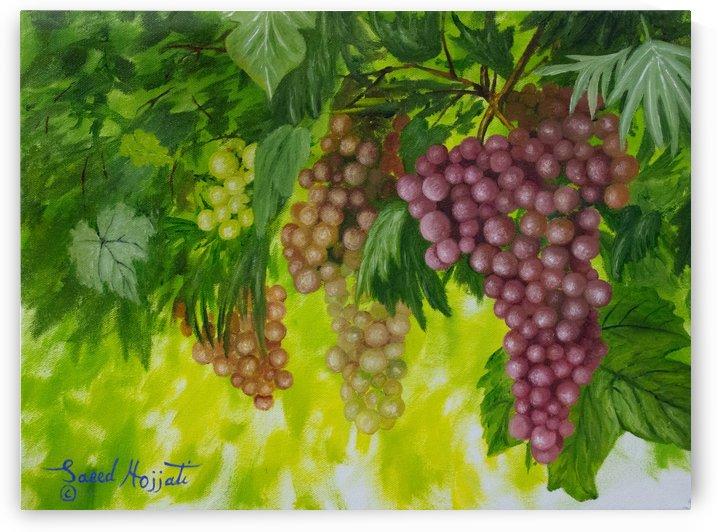 On the Vine by Saeed Hojjati