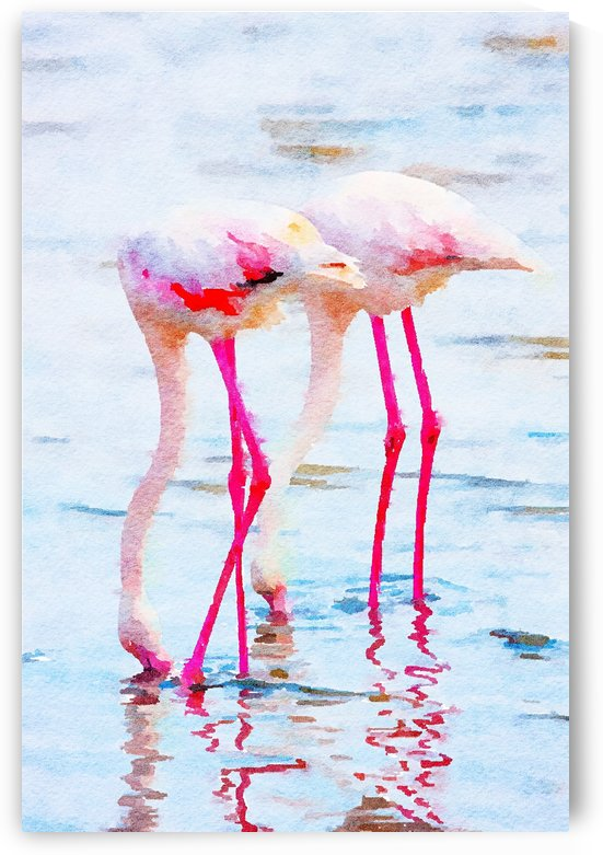 Flamingo Pink by 83 Oranges