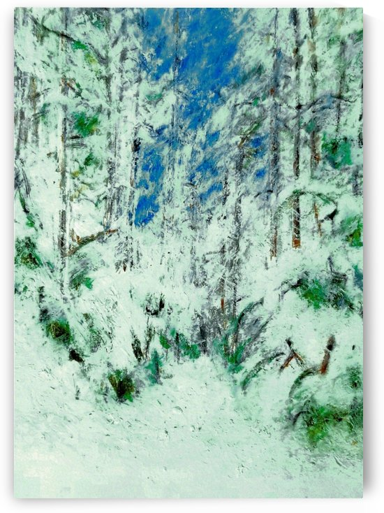 Snow on Snow on Snow  by djjf