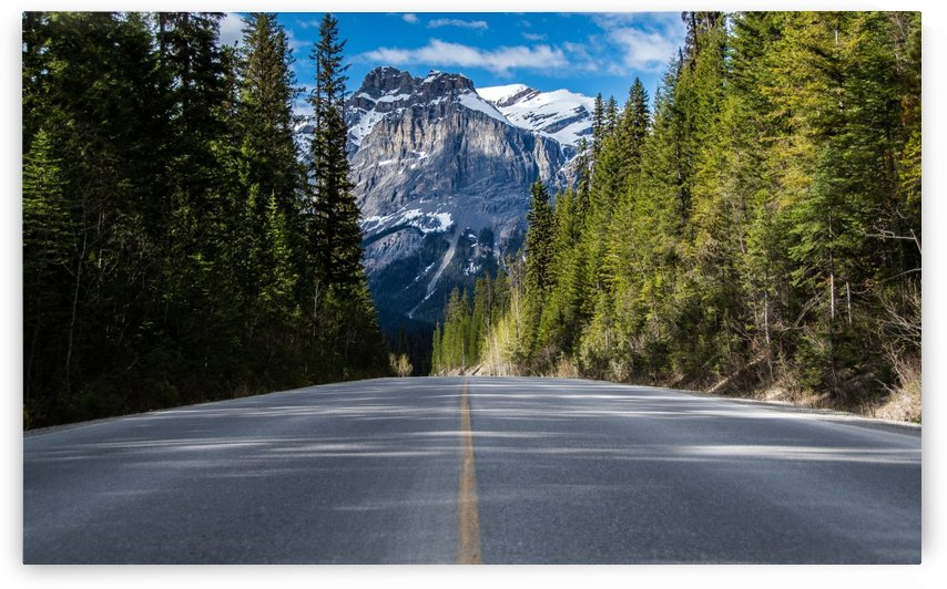 Road to Emerald Lake by Riley Schutz Photography