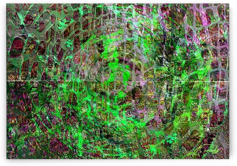 2BAAD719 CD59 427A 80EA 27BE49DB5D6D by JLBCArtGALLERY