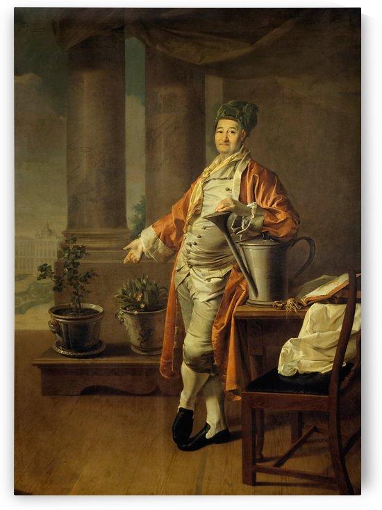Portrait of Procope Demidov by Dmitry Levitzky