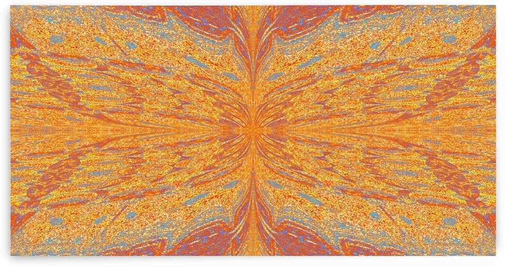 Butterfly in Orange Mist by Sherrie Larch