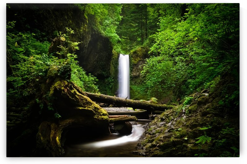 Mystical Columbia River Gorge Waterfall Oregon Pacific Northwest by Priscilla Lupo