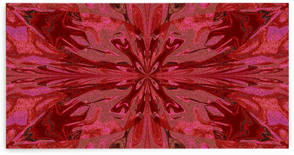 Abstract Butterfly 12 by Sherrie Larch