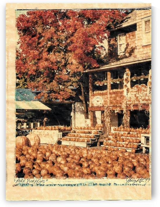more pumpkins by Jon Knight Loruenser