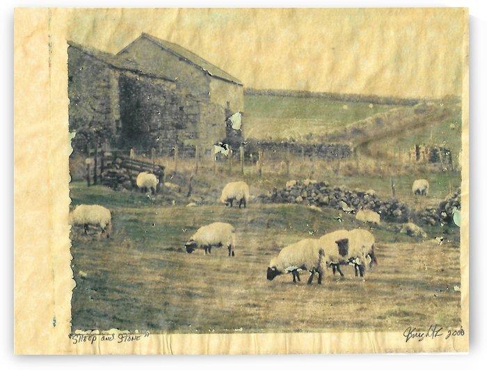 sheep and Stone by Jon Knight Loruenser