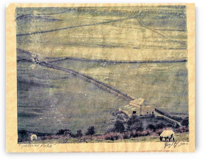 Yorkshire fields by Jon Knight Loruenser