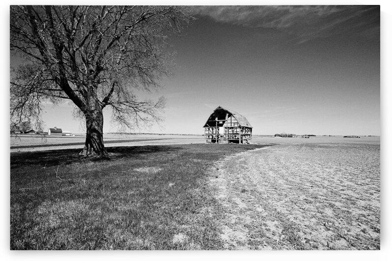Old Barn-BAW591 by Shawn A  Martin