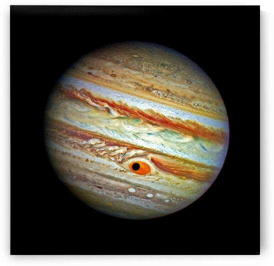 Jupiter with Ganymede Outer Space Image by Bill Swartwout Photography