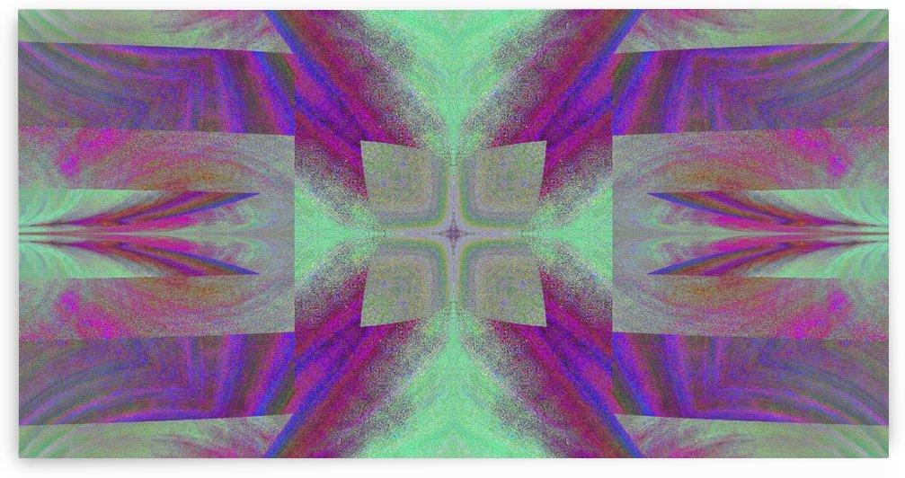 Modern Butterfly 2 by Sherrie Larch