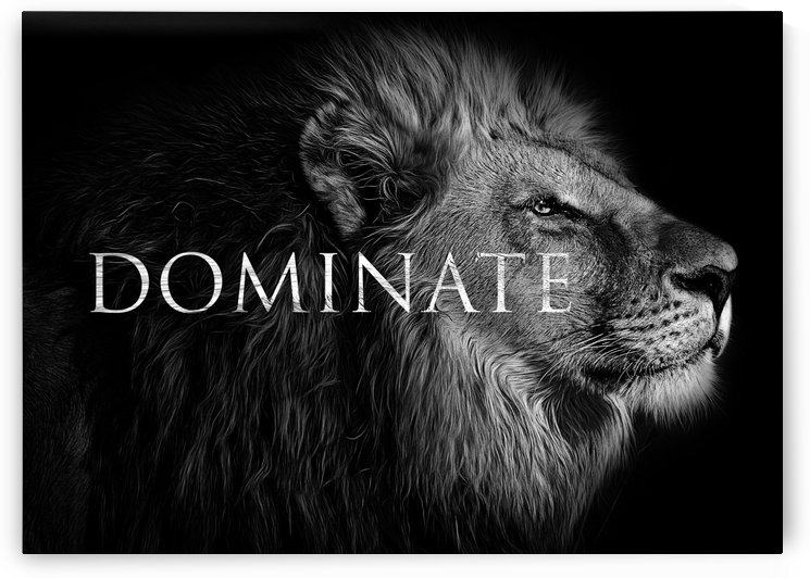 Dominate by ABConcepts