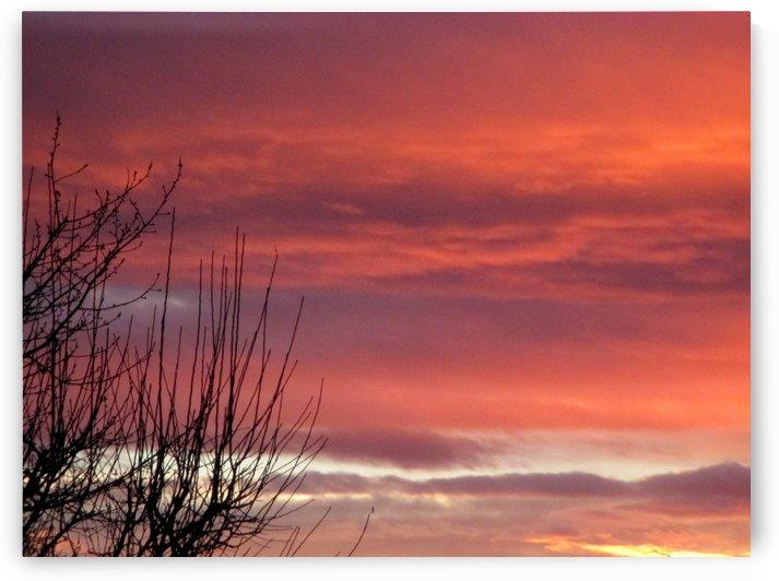 Winters sky poetry by Crystalline
