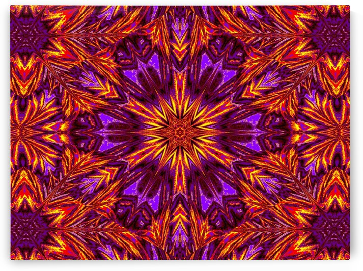 Purple Pansy 1 by Sherrie Larch
