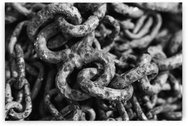 Old Chain Black And White Abstract by Deb Oppermann