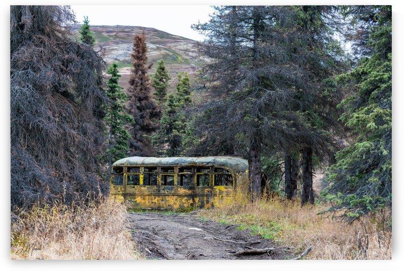 Alaska Buss 04959 by J Marsh