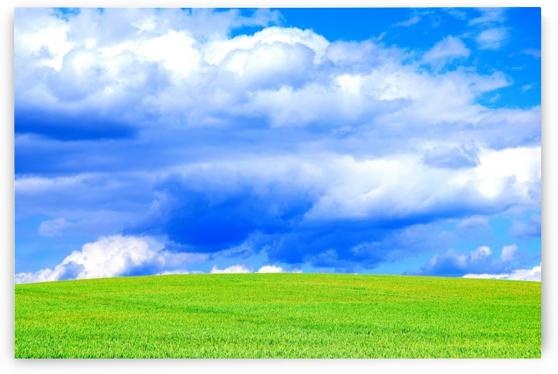 Blue Sky Clouds Field Bright Colorful Scenery Background  by Kikkia Jackson