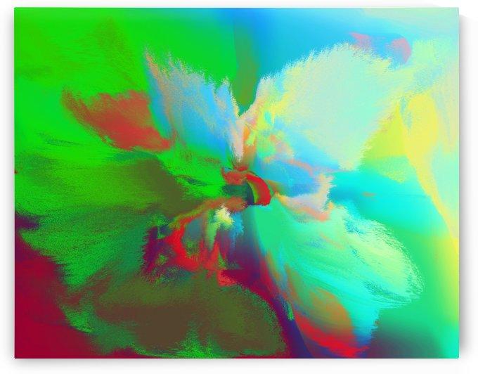 Flower Abstraction#2 by Rizal Ghazali