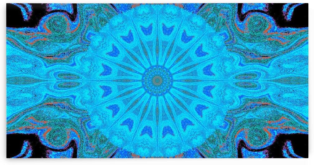 Blue Wildflower in Light by Sherrie Larch