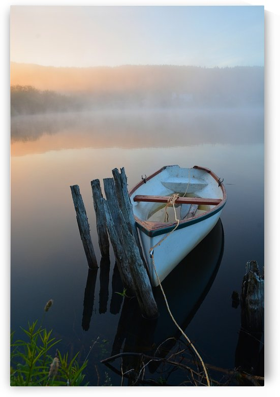 Morning Tranquility by David Brophy
