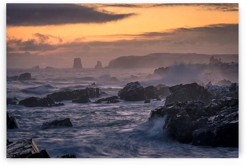 Unforgiving Seas by David Brophy