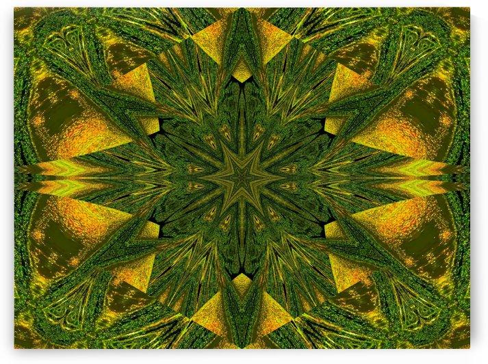 Green Sunshine Flower by Sherrie Larch