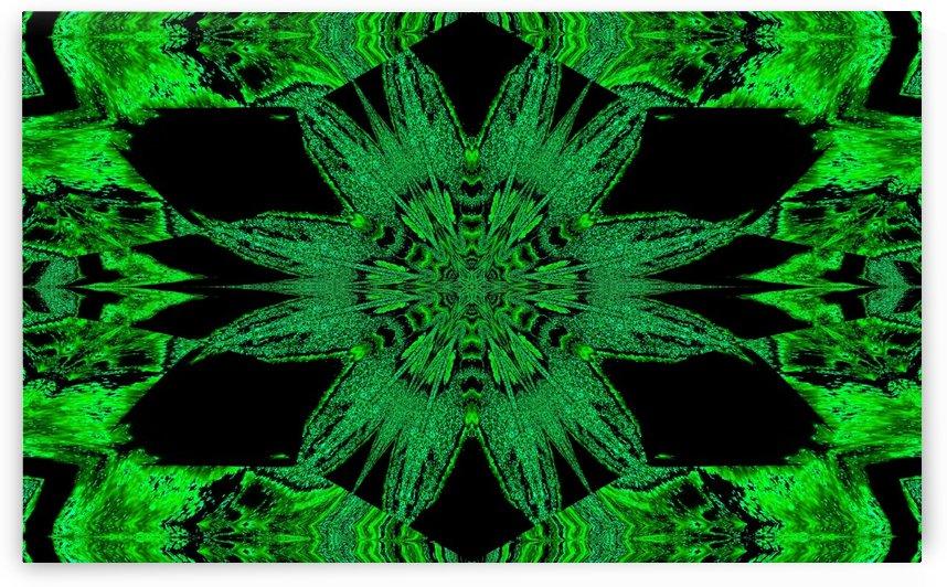 Green Velvet Flower by Sherrie Larch