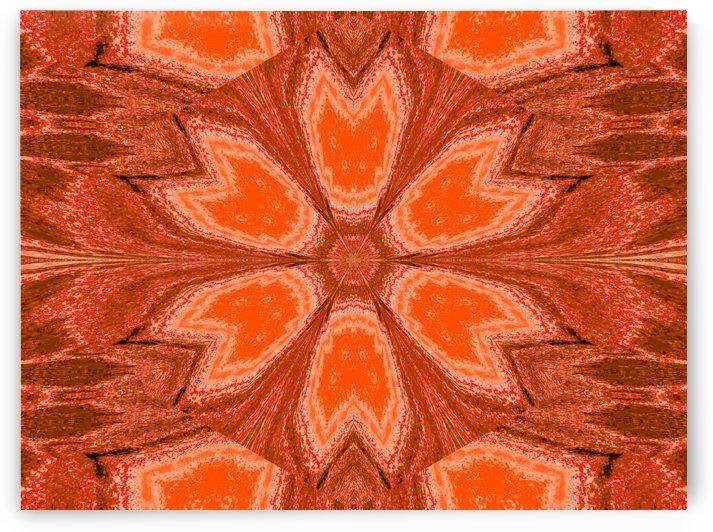 Orange Dawn 1 by Sherrie Larch