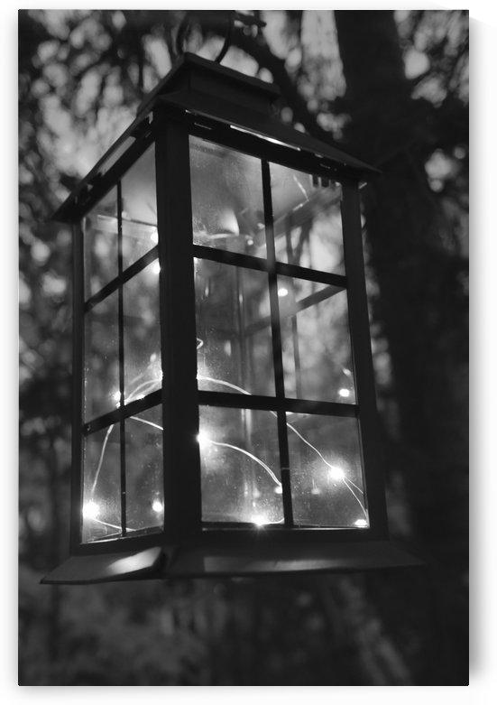 Eclaire ma lanterne by Annie St-Pierre Photographie