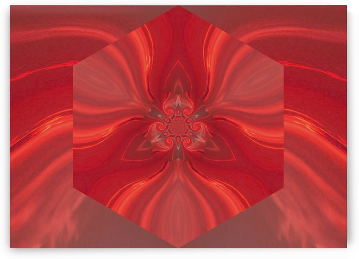 Phoenix Flower 1 by Sherrie Larch