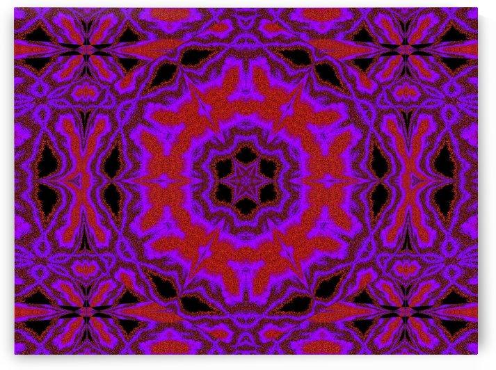 Purple Wind Flower 1 by Sherrie Larch