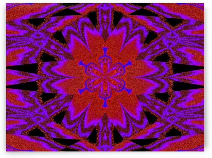 Purple Wind Flower 5 by Sherrie Larch