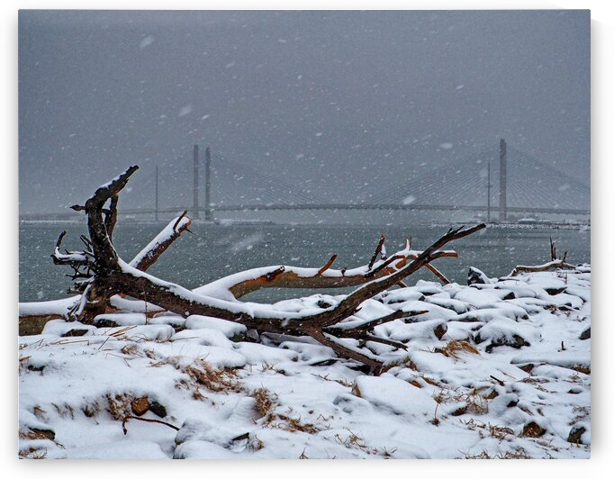 Indian River Bridge with Driftwood and Snow by Bill Swartwout Photography