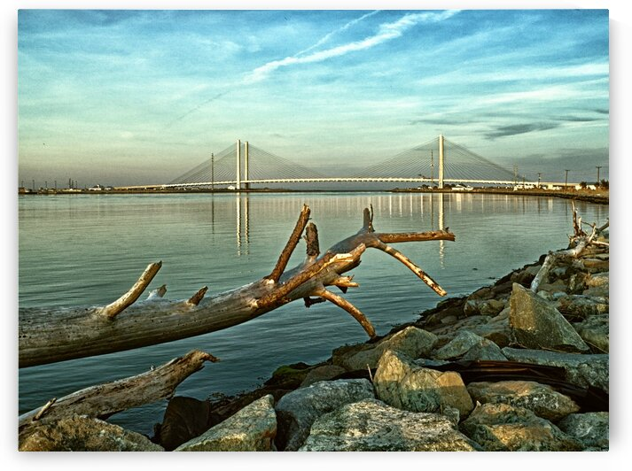 Indian River Bridge with Driftwood by Bill Swartwout Photography