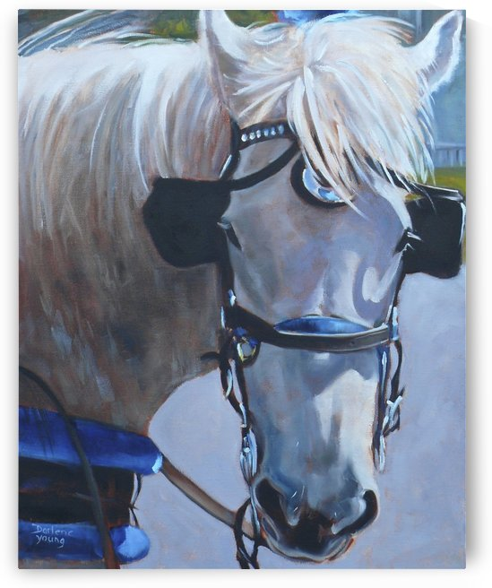 Molly by Darlene Young Canadian Artist