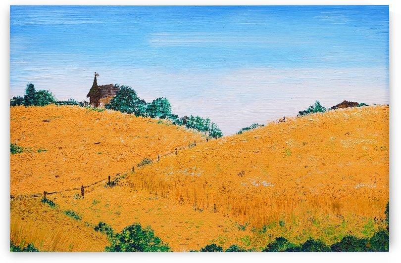 Summer Fields by Birgit Moldenhauer
