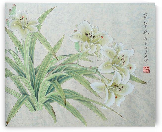 White Lilie by Birgit Moldenhauer