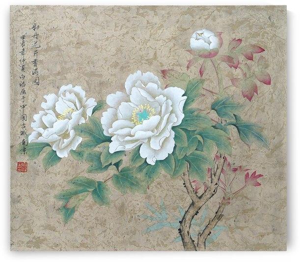 White Rose by Birgit Moldenhauer